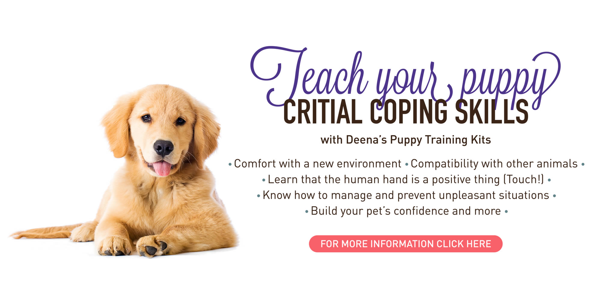 Puppy Training Kits